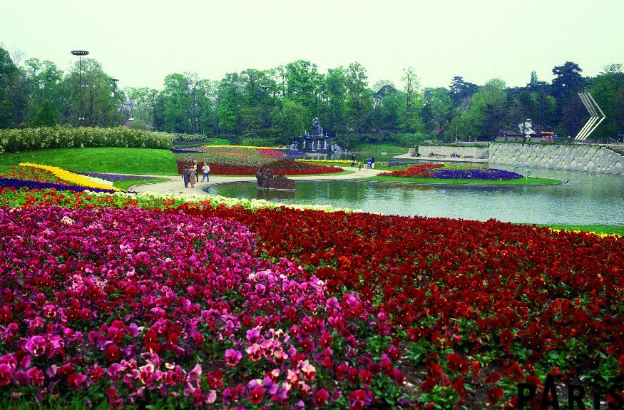 春天的巴黎花卉公園 (Photo credit @photos.parisinfo.com)