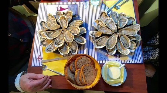 great-oysters.jpg