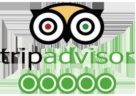 trip advisor five star reviews