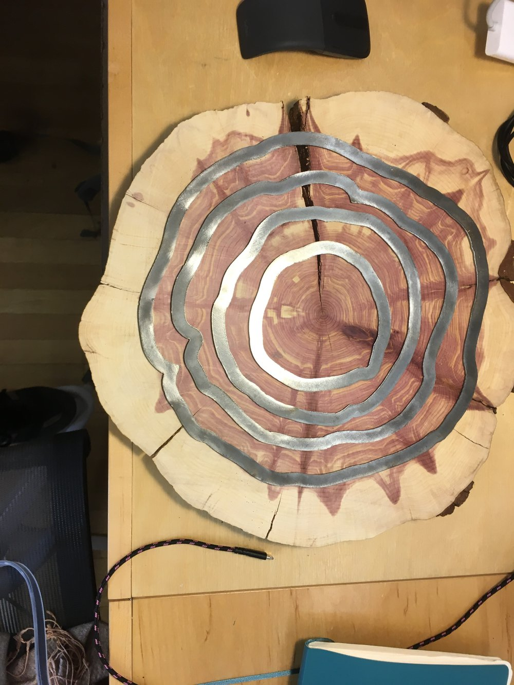 Stump slice after installing the metal rings