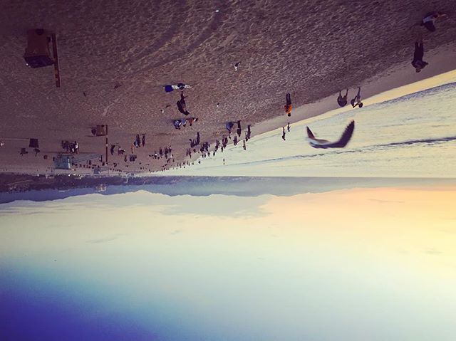 🏖#beachesbecrazy #hellohumans #viewfromabove