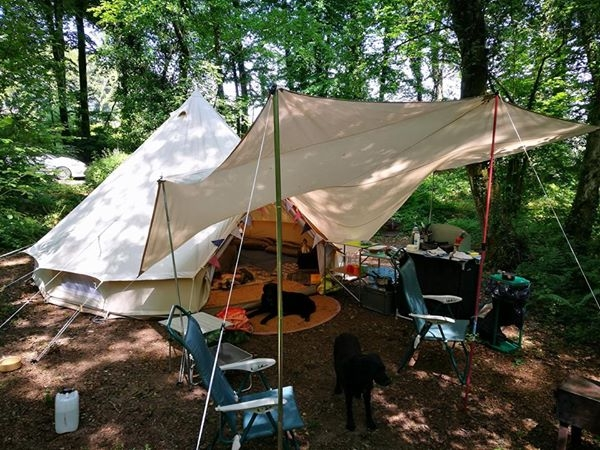 Private woodland camping