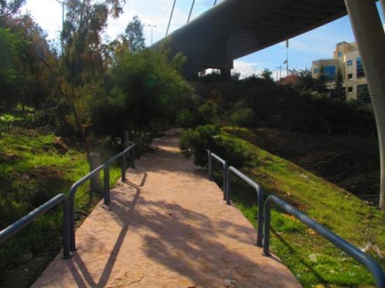 View of a pathway in the park taken from the north   لقطة لممر في الحديقة مأخوذة من الشمال