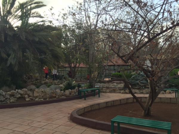 View of the south-west area in the park taken from the east   لقطة للمنطقة الجنوبية الغربية في الحديقة مأخوذة من الشرق
