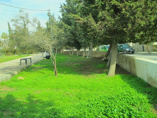 View of the park taken from the southern entrance   لقطة للحديقة مأخوذة من المدخل الجنوبي