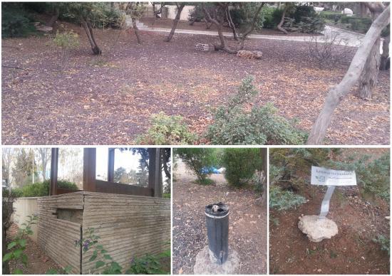 Images of the park's current condition   صور تبين الوضع الحالي للحديقة