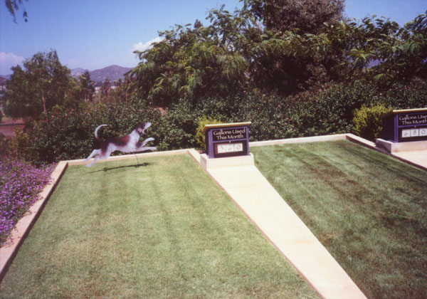 Figure 11: The Water Conservation Demonstration Garden in San Diego, California: Two grass areas with water-use meters showing the different water needs of each area.