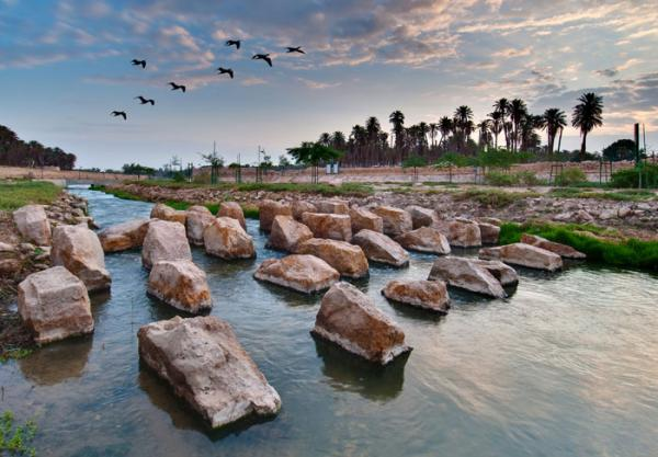 Wadi Hanifa Wetlands project in Riyadh. (Courtesy of the Aga Khan Award for Architecture)