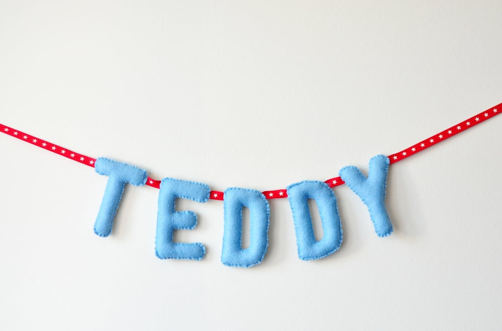TEDDY BABY NAME BUNTING