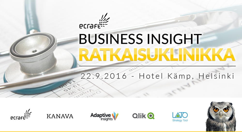Business Insight Ratkaisuklinikka