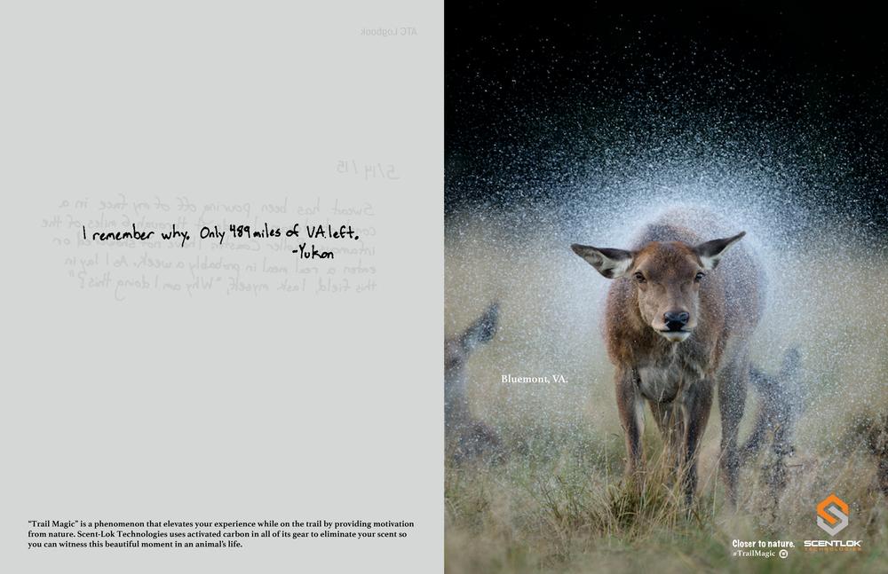 print2_page2-07.jpg