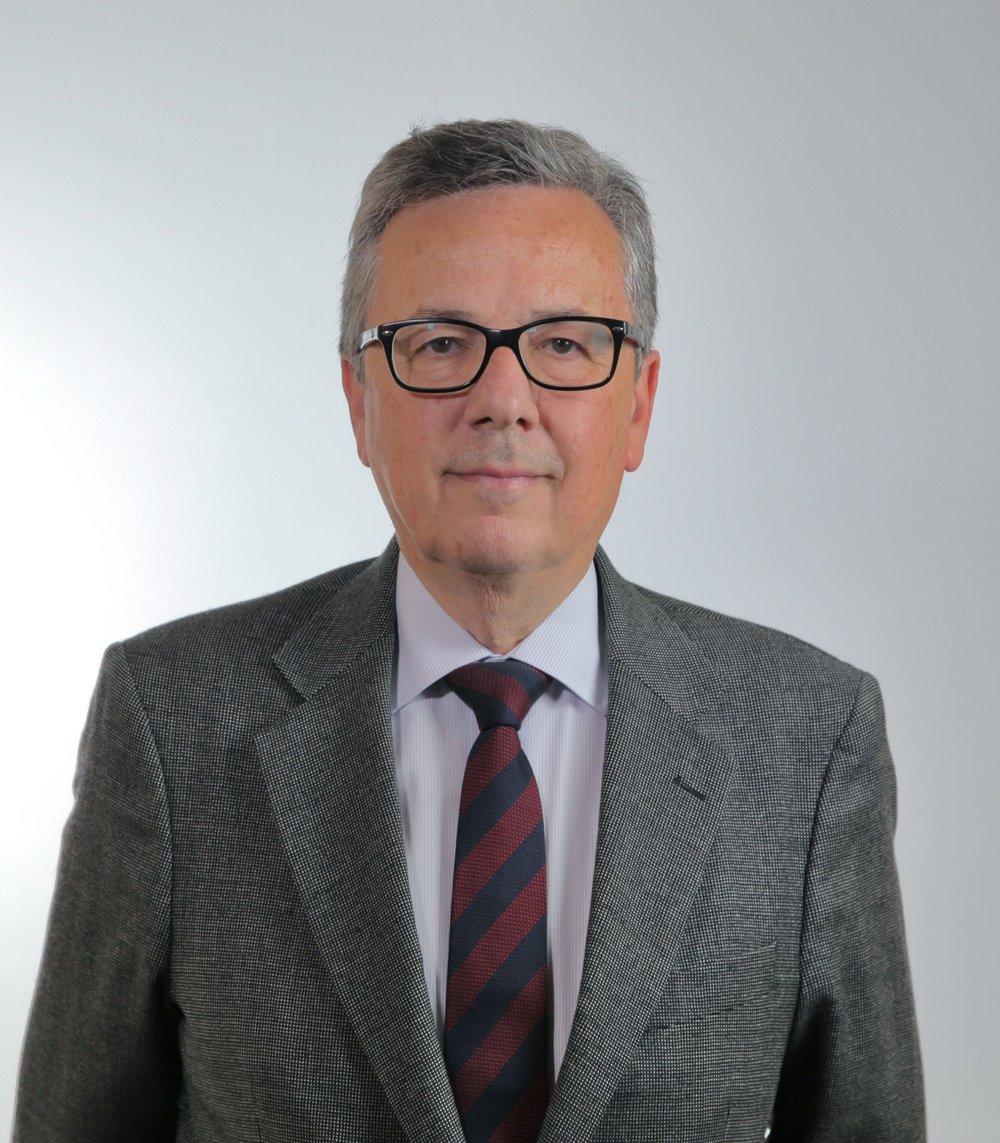 Economista - Auditor de cuentas