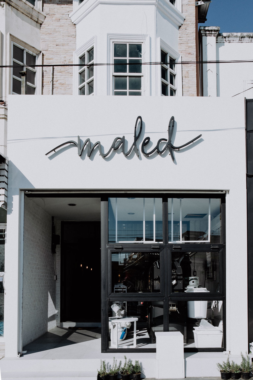maled coffee roasters chiang mai