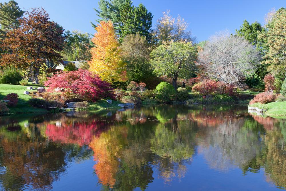 Asticou Garden 1005