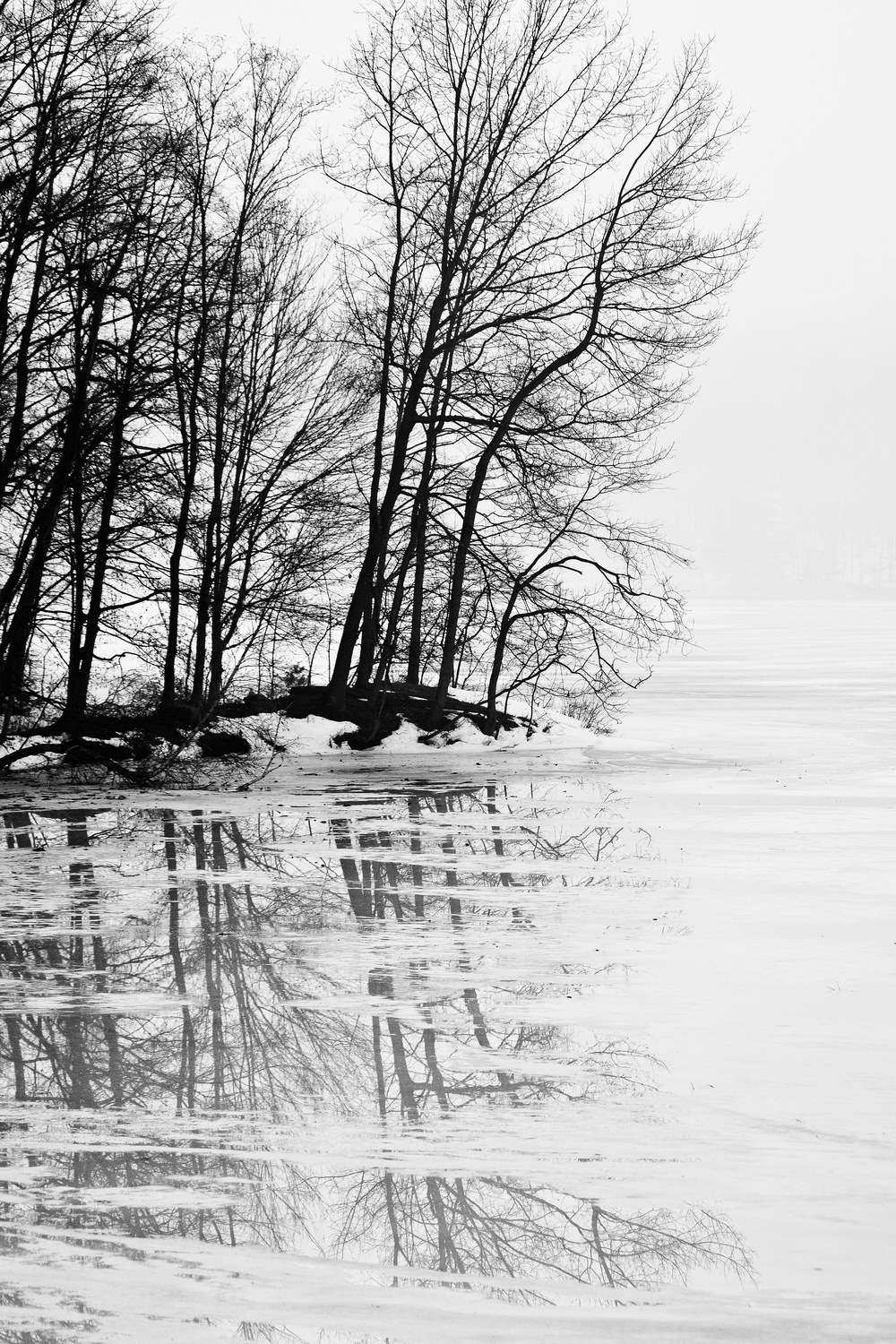 Winter Reflections 1025