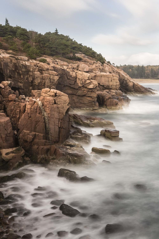 Acadia Shoreline