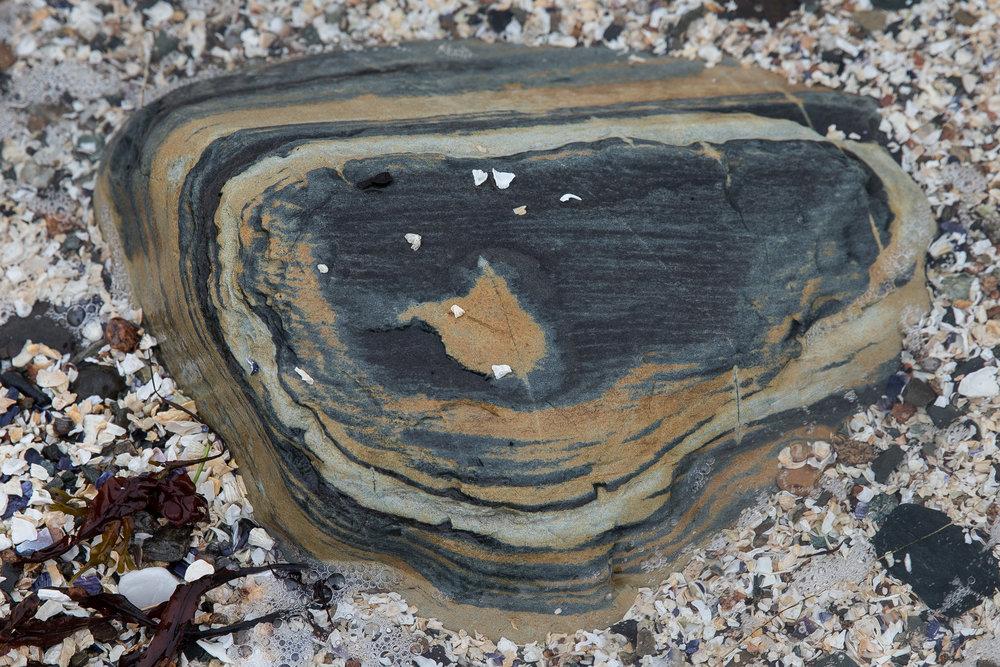 Rock Detail 1161