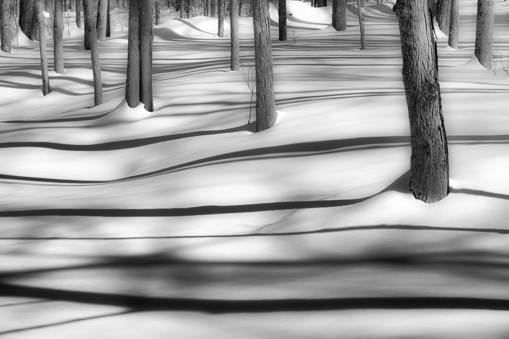 SNOW SHOW-.jpg
