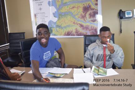 PEEP Macroinvertebrate Study 7/14/16
