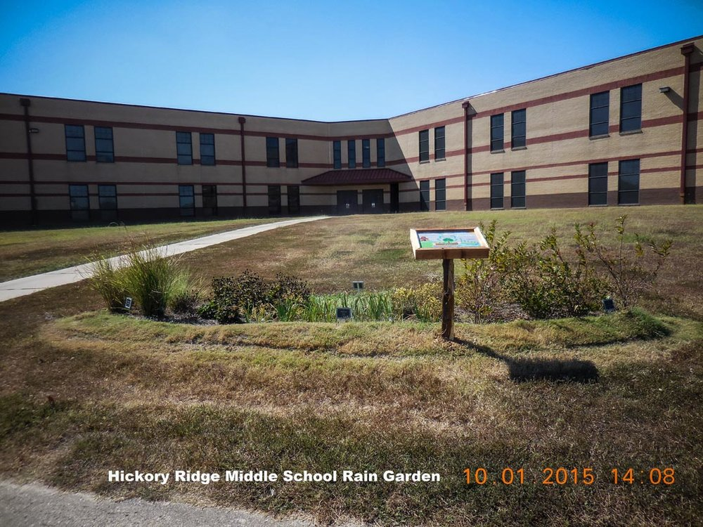 Hickory Ridge Middle Rain Garden-1.jpg