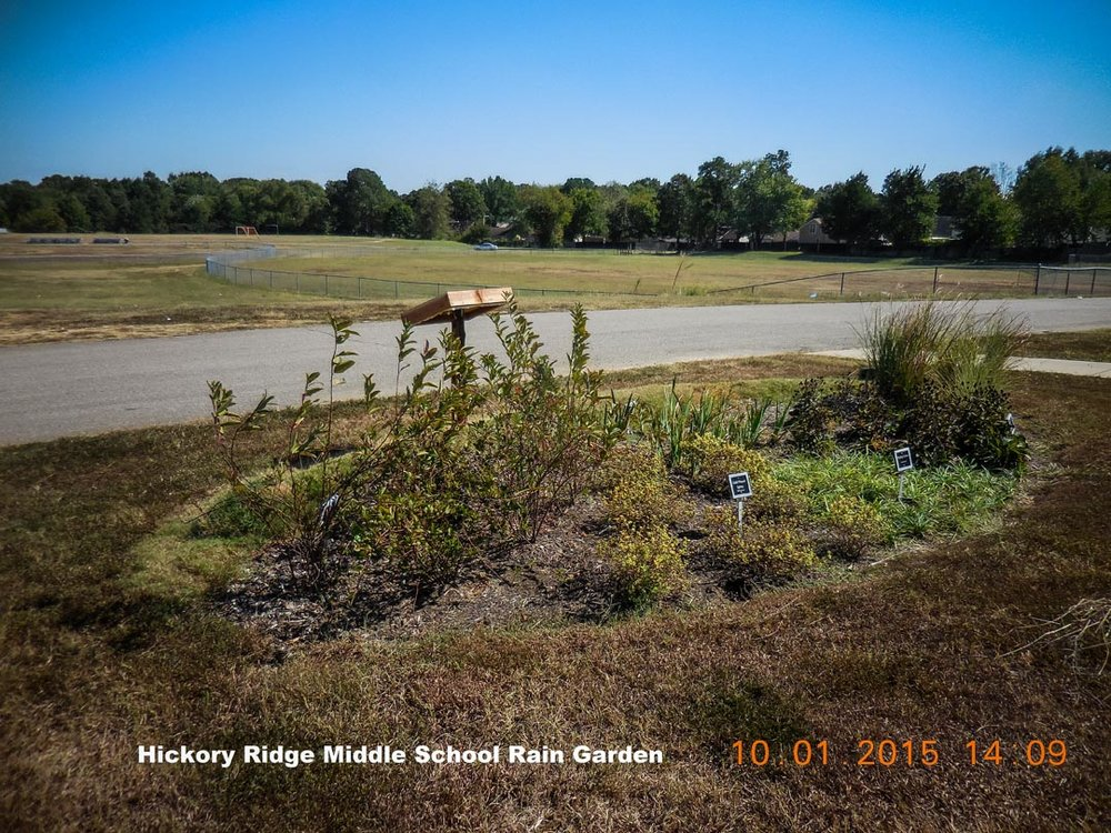 Hickory Ridge Middle Rain Garden-2.jpg