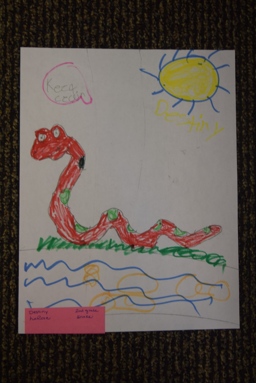 Destiny- LaRose, 2nd grade