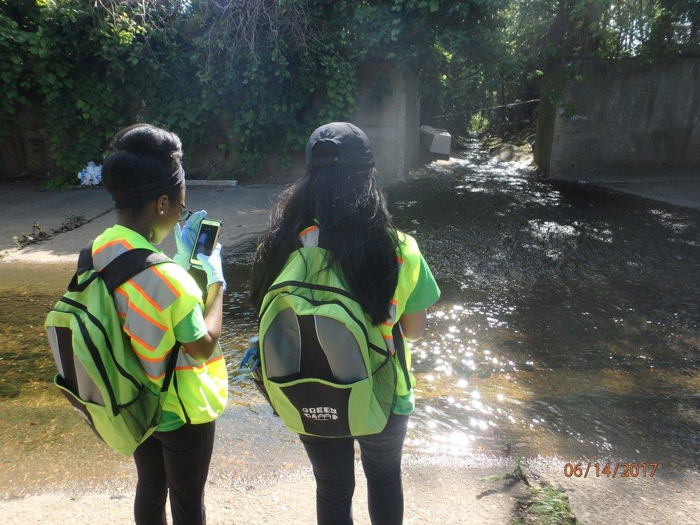 2017 Week 2: Cypress Sampling
