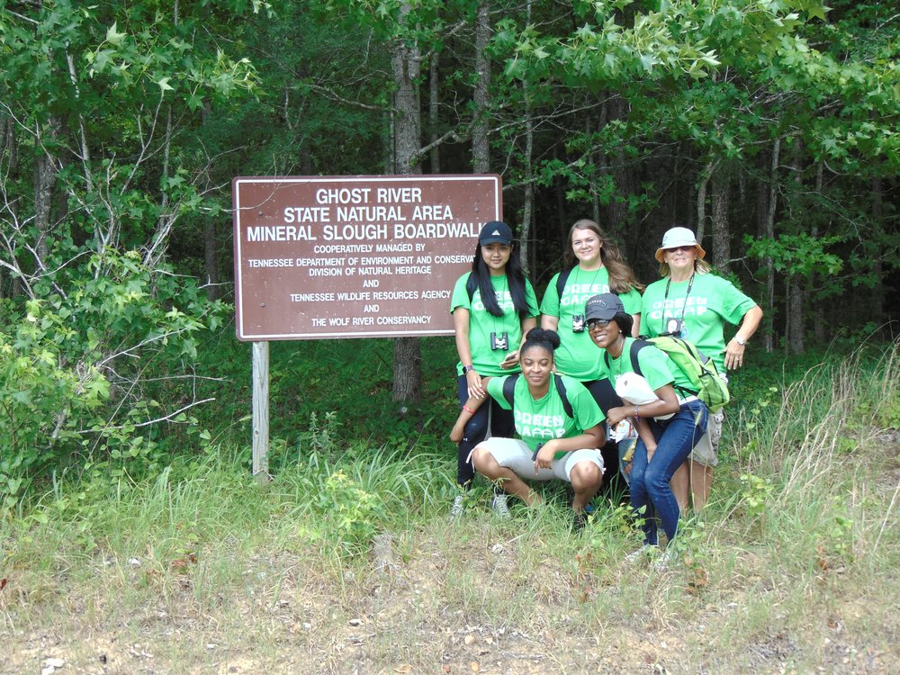 Week 3: Rural wetland assessment