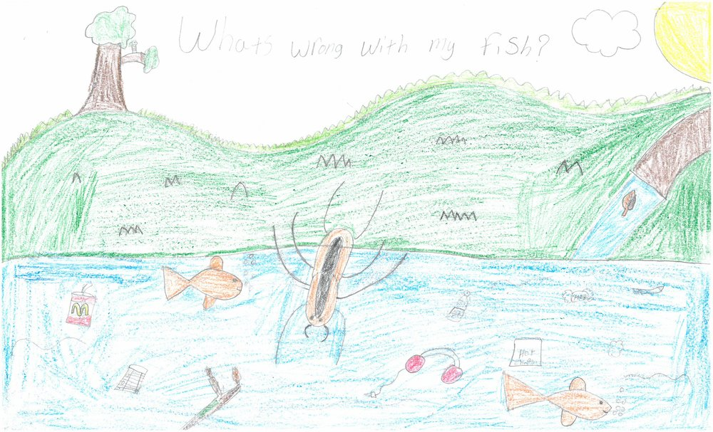 Honorable Mention! Desirae Chalmers, 4th grader at Vollentine Elem.