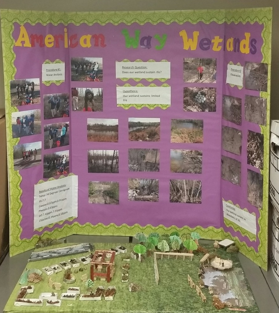 American Way Middle School Wetland Study and Improvements Model