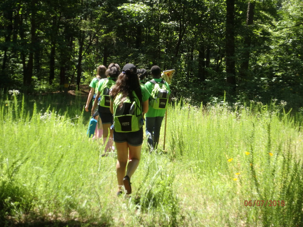 2018 Day 4, Group 1 : Trek to Baker's Pond: Headwaters of the Wolf River