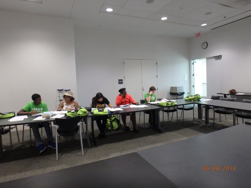 2018 Day 5, Group 1 : Study Day at Benjamin Hooks Library