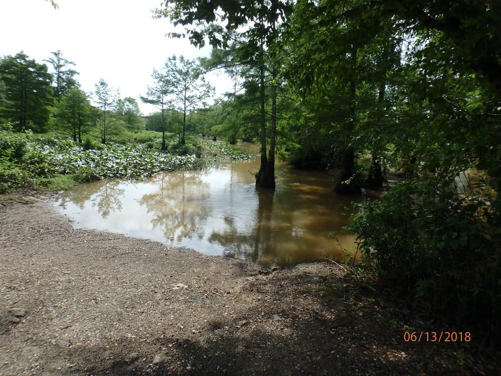 2018 Day 3, Group 2 : Bateman Bridge and Rural Wetland Mineral Slough