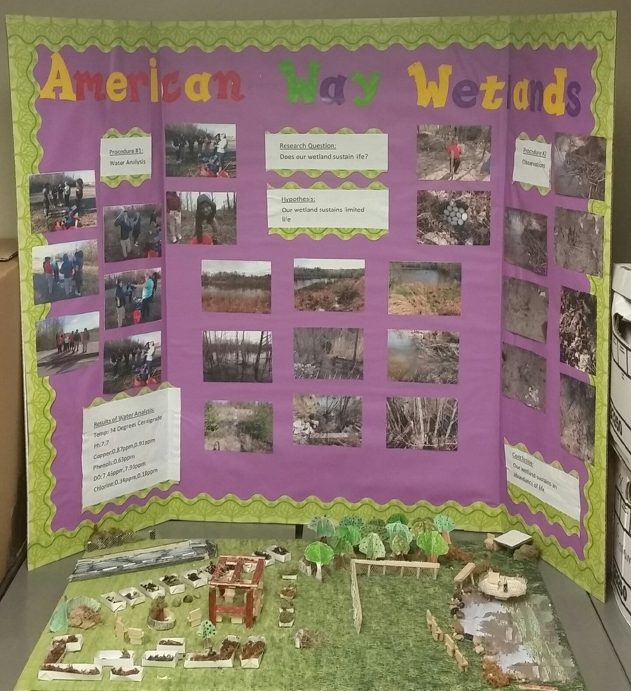 American Way Wetland Display.jpg