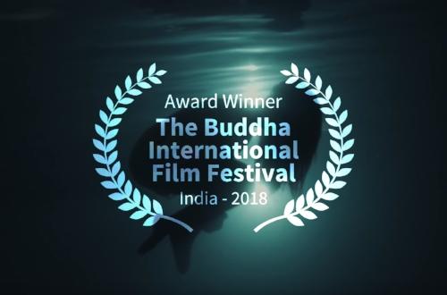 Best Experimental Film - June 2018
