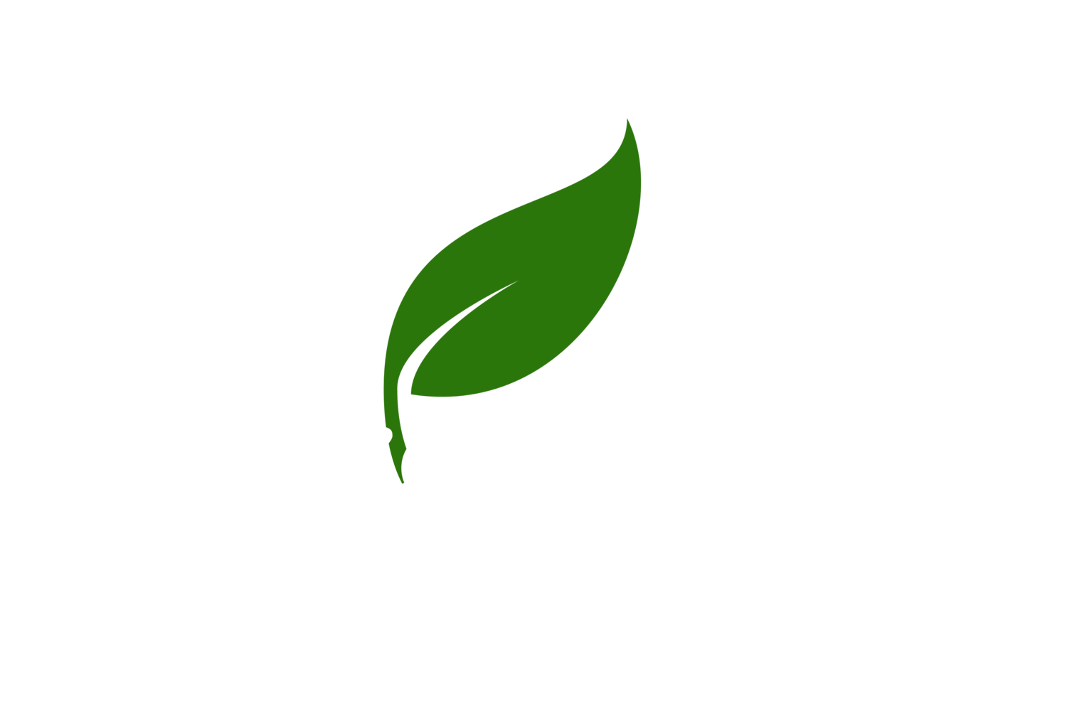 Bosque Vivo