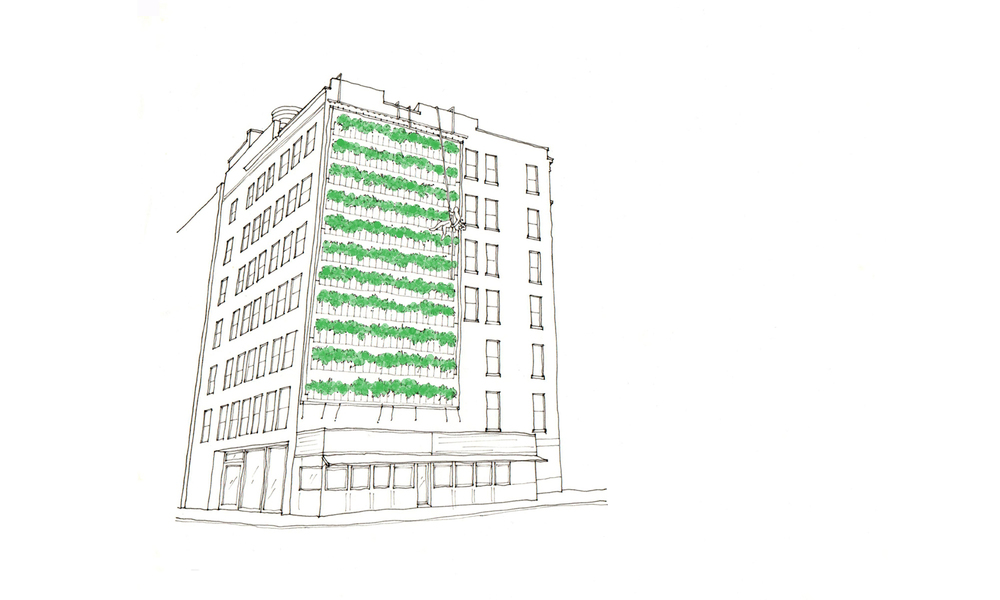 vertical urban farming, harvest by rapelling
