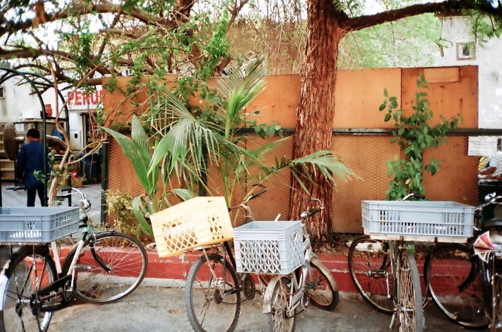 bikes' parking