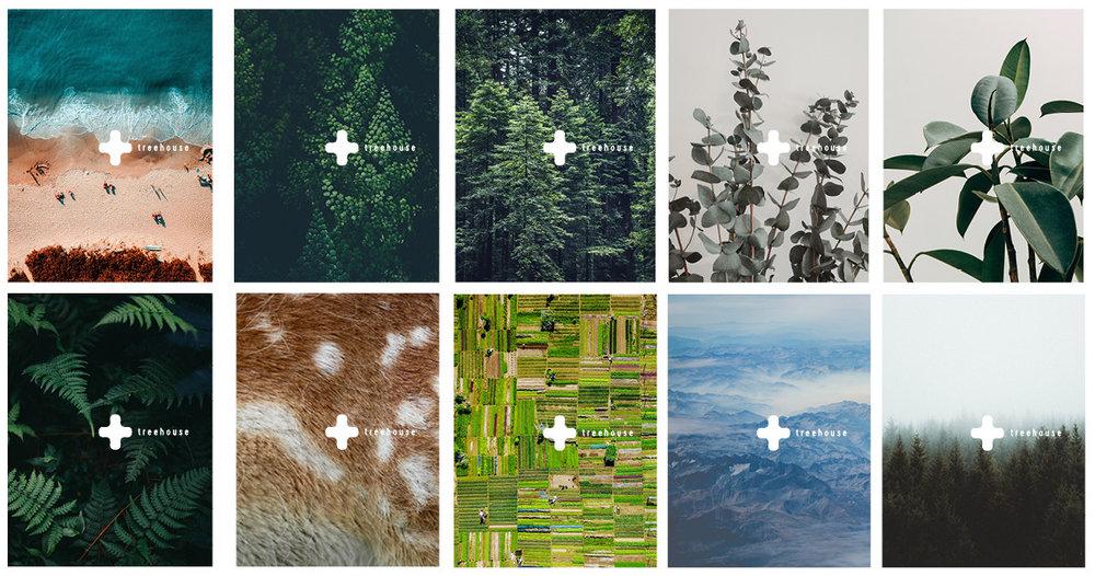 Treehouse_Postcards_An Diels.jpg