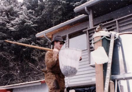 In the beginning years of DIPAC, Ladd hoists salmon fry from a raceway at Kowee Creek hatchery.