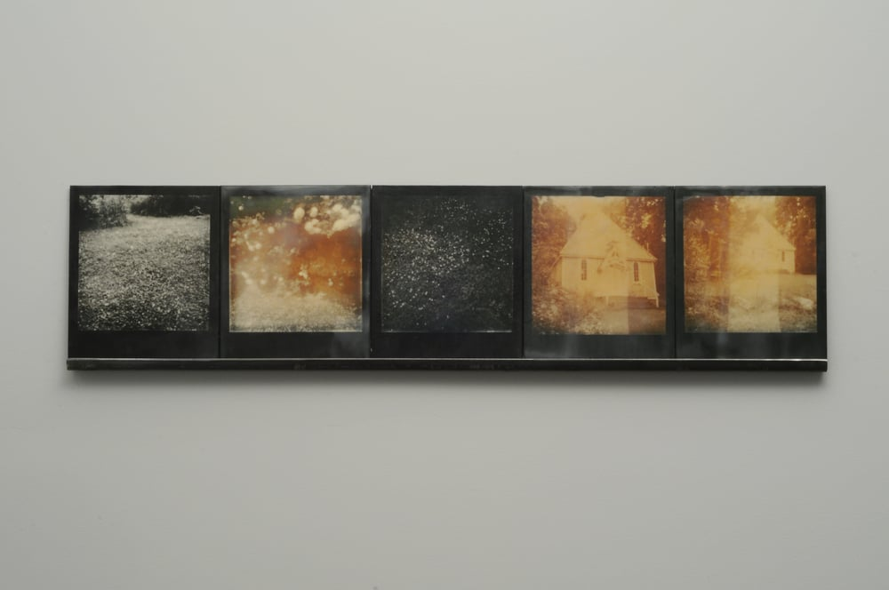 "Clove  , 2015, pigment prints on cotton and panel with encaustic medium and steel shelf, 8.5"" x 35.25""     variable edition of 2 and 1 artist proof"