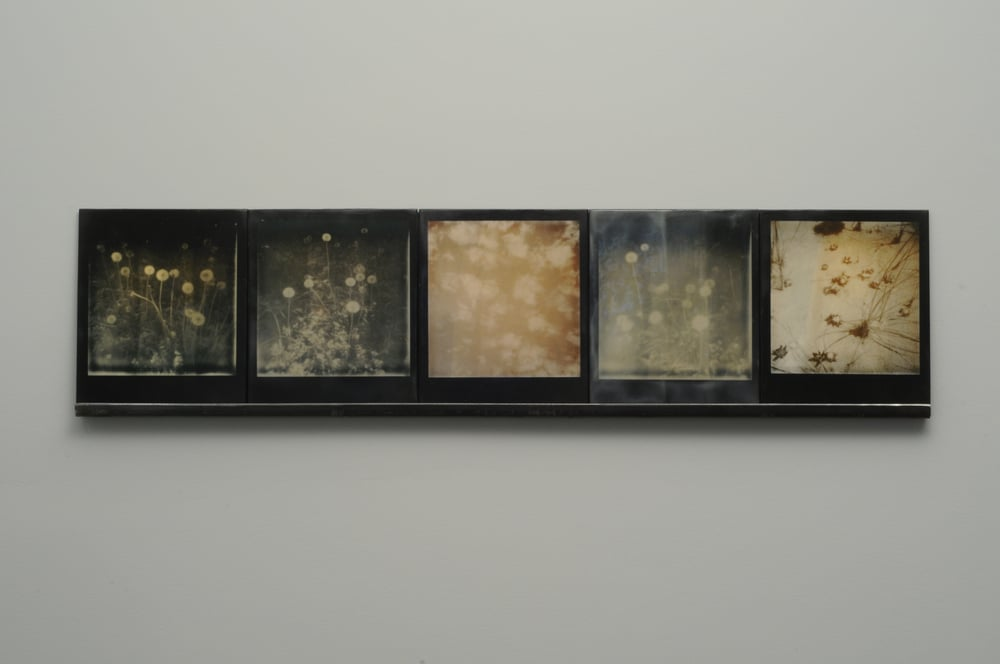 "Starfall 1  , 2014-15, pigment prints on cotton and panel with encaustic medium and steel shelf, 8.5"" x 35.25""    variable edition of 2 and 1 artist proof"