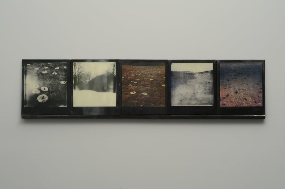 "Winter Spill  , 2015, pigment prints on cotton and panel with encaustic medium and steel shelf, 8.5"" x 35.25""      variable edition of 2 and 1 artist proof"