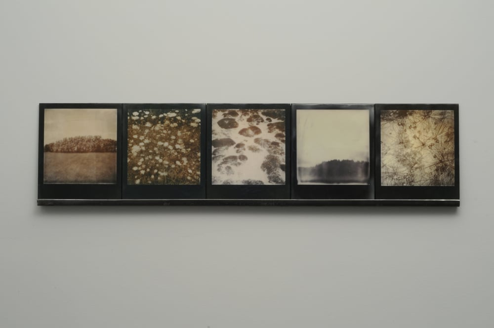 "Starfall 2  , 2015, pigment prints on cotton and panel with encaustic medium and steel shelf, 8.5"" x 35.25""      variable edition of 2 and 1 artist proof"
