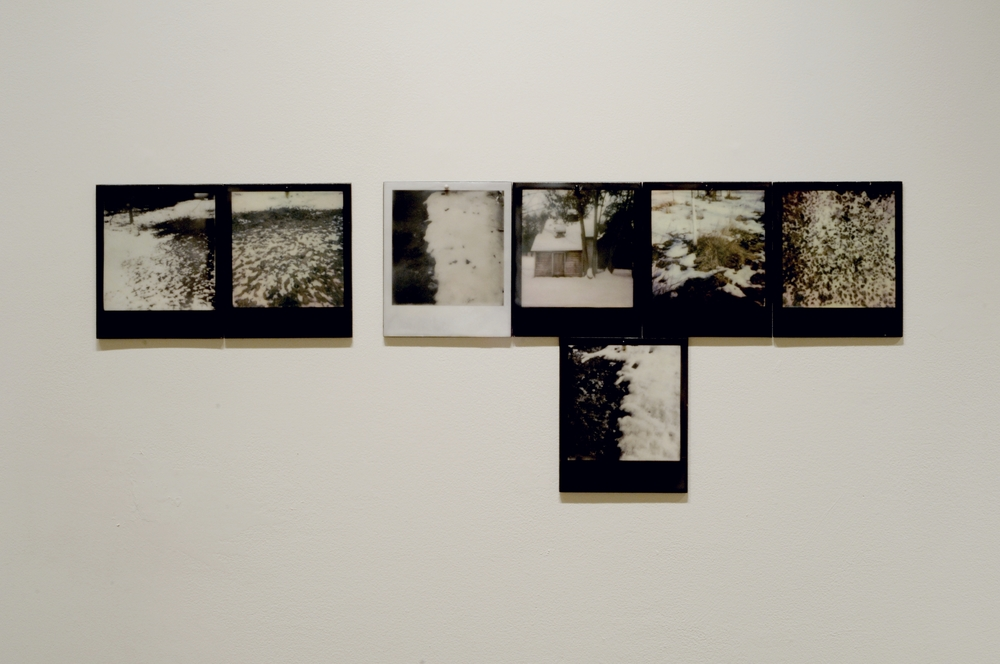 Reverse Migration  , part 5 of 6, pigment prints on painted panel with encaustic medium, dimensions variable, 2014-15