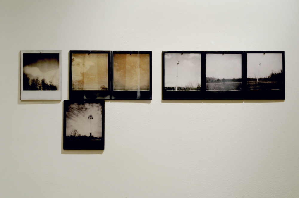Reverse Migration  , part 3 of 6, pigment prints on painted panel with encaustic medium, dimensions variable, 2014-15