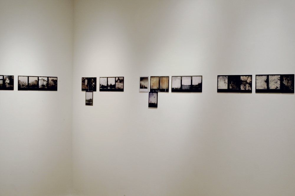 Reverse Migration  , installation view, part 1-4 of 6, pigment prints on painted panel with encaustic medium, dimensions variable, 2014-15