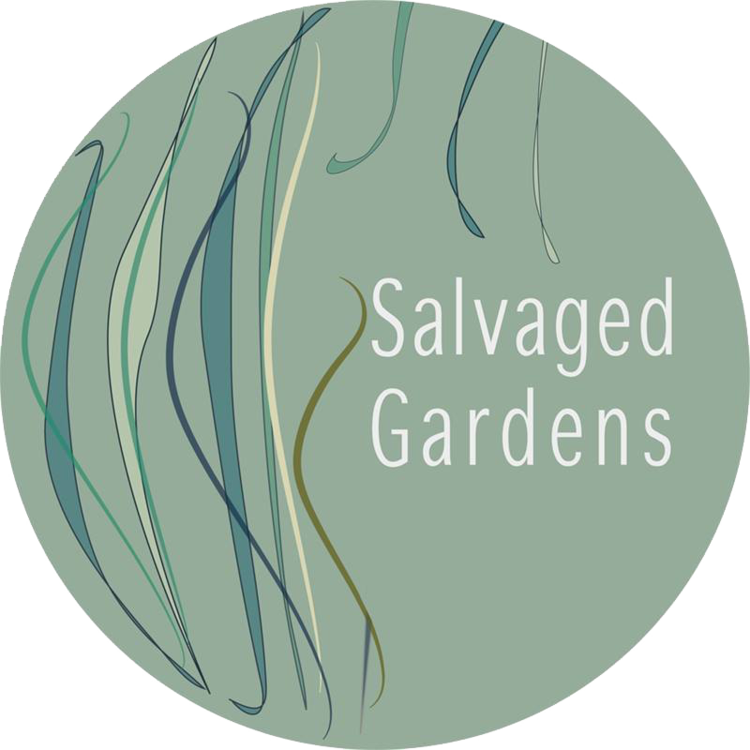 Salvaged Gardens