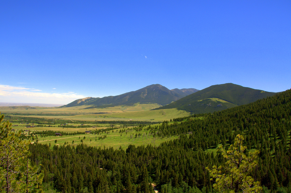 Custer National Forest in Montana.