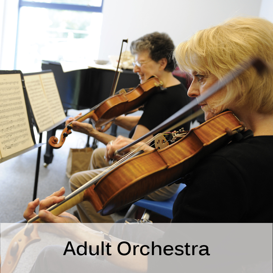 Programs _ Adult Orchestra.jpg